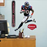 Fathead NFL Houston Texans Andre Johnson Junior Wall Graphic