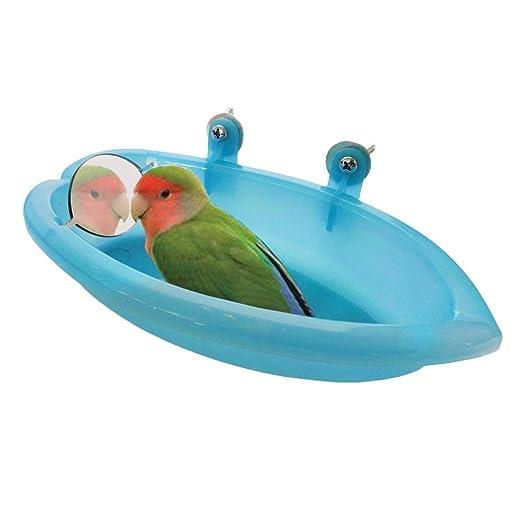fairyy Tina para pájaros con Espejo pequeño para comedero de ...