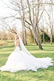 Soft Wedding Veil   Catherdal Length
