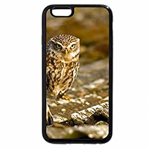 iPhone 6S Plus Case, iPhone 6 Plus Case, Owl