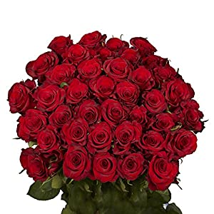 GlobalRose 50 Red Roses – Beautiful Fresh Cut Flowers- Lovely Natural Blooms