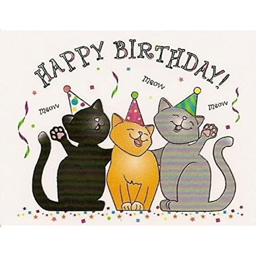 Image result for happy birthday to my calico cat