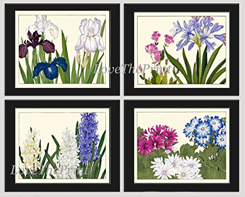 Blue Flowers Art Print Set of 4 Antique Japanese Woodblock Beautiful Botanical Wildflowers White Violet Pink Iris Hyacinth Green Garden Nature Home Room Wall Decor Unframed