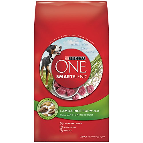 Purina ONE SmartBlend Lamb & Rice Formula Adult Dry Dog Food