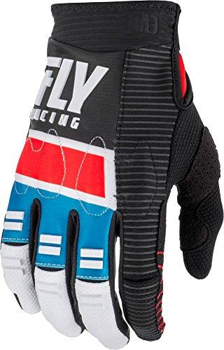 (Fly Racing 2019 Evolution Gloves (LARGE) (RED/BLUE/BLACK))