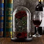puto-Preserved-Real-Rose-Eternal-Rose-in-Glass-Dome-Gift-for-Her-Thanksgiving-Christmas-Valentines-Day-Birthday-Mothers-Day-Burgundy