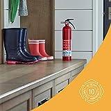 First Alert 1038789 Standard Home Fire
