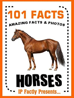 Top 10 books about horses