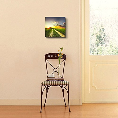 Rural Landscape Path in The Field at Sunset Wall Decor