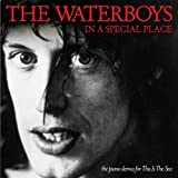 In A Special Place The Piano Demos For This Is The Sea by WATERBOYS (2011-05-17)