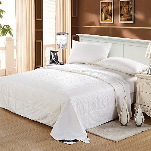 LilySilk 100 Silk Comforter Set Filled Duvet Quilt Silk Floss Cotton Cover Machine Washable King 104x92 inches Bed