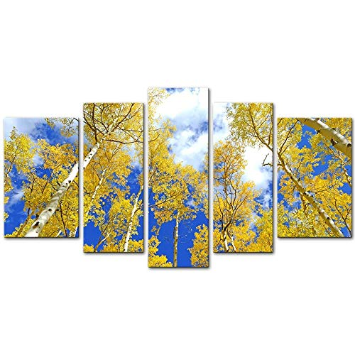 Soefipok Wall Art Decor Poster Painting On Canvas Print Pictures 5 Pieces Autumn Foliage Aspen Trees in Fall Colors Blue Sky Forest Landscape Framed Picture for Home Decoration Living Room