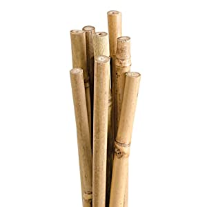 Natural First-Cut Bamboo Stakes, Pack of 10 (Approx. 3/8 Inch x 4 Feet)