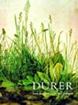 D�rer and the Virgin in the Garden