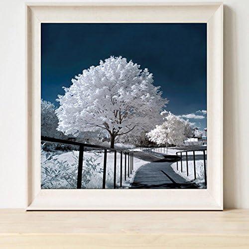 LUHSICE Pittura Diamante Camera da Letto Scena di Neve 35x45cm