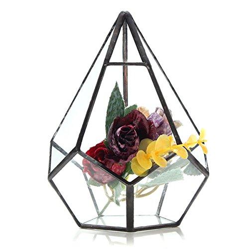 EgBert Pianta Succulenta Triangolo Serra Vetro Terrario DIY Micro Paesaggio Bottiglia di Vetro