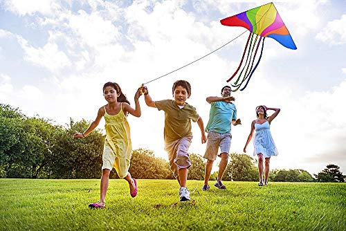 fac41f88e A Nylon Childrens Kite for Kids to Adults Children Girls Boys Adult The Large  Easy Fly
