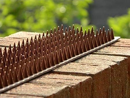 clôture grillage anti ESCALADE Garde sécurité Pointe chat oiseau Répulsif