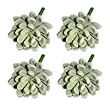 LJY 4 Pieces Realistic Artificial Succulent Cactus Greenhouse Small Plants Unpotted for Home Garden Decoration