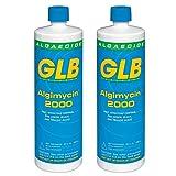 GLB 71104A-02 Algimycin 2000 Algaecide for Swimming Pools, 1-Quart, 2-Pack