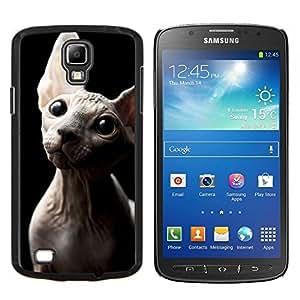 TECHCASE---Cubierta de la caja de protección para la piel dura ** Samsung Galaxy S4 Active i9295 ** --Sphynx Donskoy Peterbald sin pelo del gato