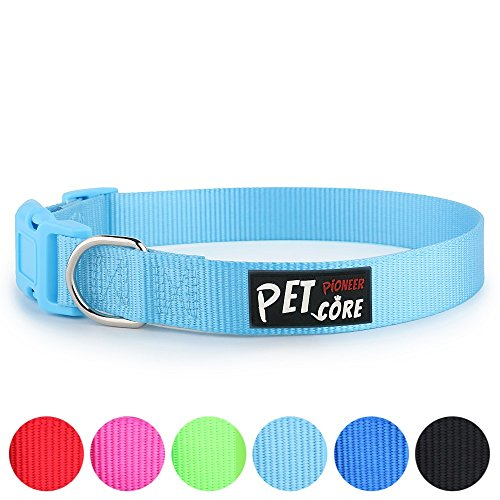 Pioneer Petcore Classic Solid Color Nylon Dog Collar,Colorful Plastic Buckle,Heavy Duty,Adjustable for Puppy Dogs,Neck 8-12 inch,Extra Small,Sky Blue (Nylon Dog Puppy Collar)