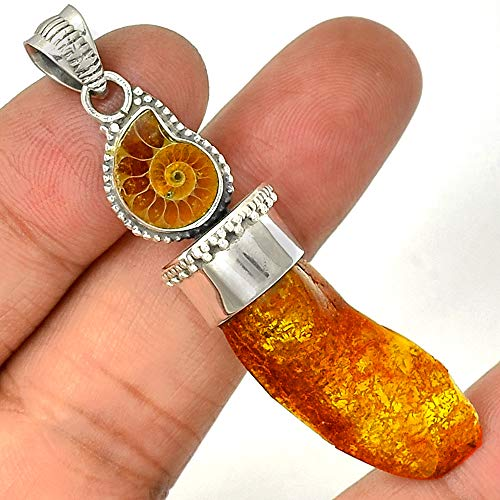 Baltic Amber & Fossil Ammonite Gemstone Pendant Necklace 925 Sterling Silver Jewelry -