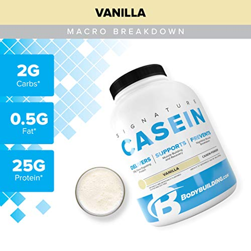 Bodybuilding Signature Casein Protein Powder | Vanilla Slow Release Micellar Casein | Rich in Amino Acid | 4lbs, 55 Servings