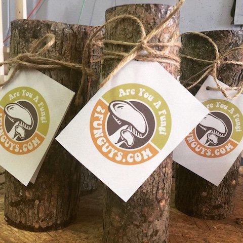 Review 12″ Shiitake Mushroom Log
