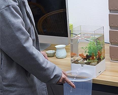 Multifunción Acuario - Maceta Cubic transparente Auto Planta Sistema ...