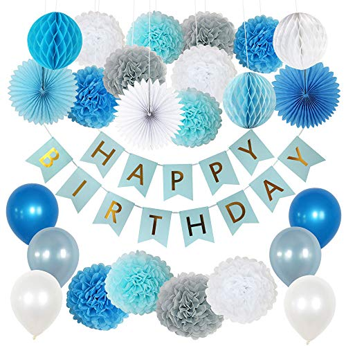 Boy Birthday Decorations, 1st Birthday Boy Decorations, Happy Birthday Banner, Tissue Pom Pom Kit, Honeycomb Balls, Paper Fans, Balloons - Blue, Gray, White -