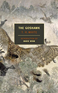 A kestrel for a knave penguin modern classics ebook barry hines the goshawk new york review books classics fandeluxe Images