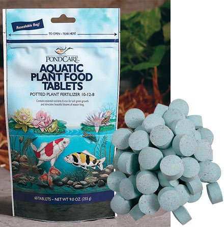 Best Aquatic Plant Food
