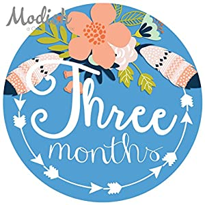 12 Monthly Baby Stickers, Tribal, Flowers, Feathers, Arrows, Girl, Baby Belly Stickers, Monthly Onesie Stickers, Baby Month Stickers, Arrows, Flowers, Tribal, Pink, Mint, Purple, Teal, Blue, Girl 4