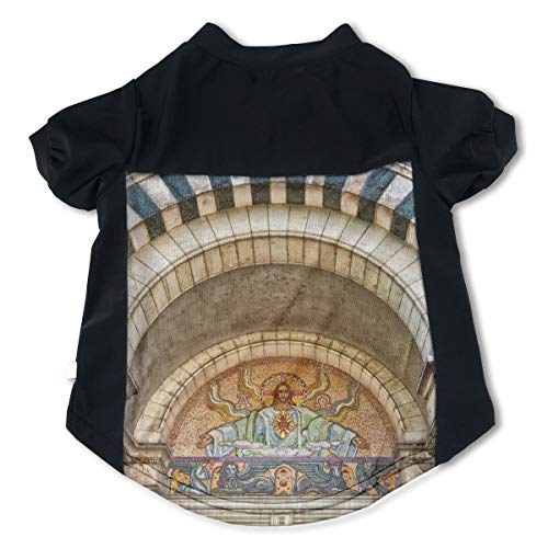 Fbve5dg Cosy Archway Cathedral Jesus Pet Tshirt for Puppy Moggy M
