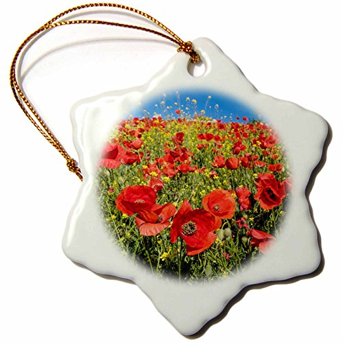 3dRose Danita Delimont - Flowers - Spain, Andalusia. A field of bright and cheerful red poppy wildflowers - 3 inch Snowflake Porcelain Ornament (orn_277891_1) by 3dRose