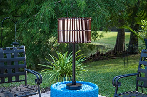 Kenroy Home 32279BRZ Bora Outdoor Table Lamp