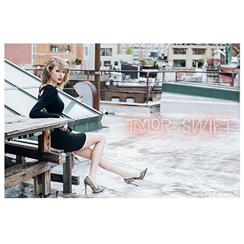 "Taylor Swift Collectible: 2014 Roof Top 1989 Tour 17""x26"" Poster"