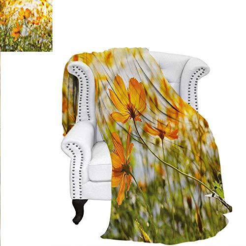 RenteriaDecor Nature Throw Blanket Grass Foliage at Sunrise Blanket 50