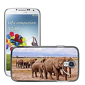 Hot Style Cell Phone PC Hard Case Cover // M00114931 Elephants Africa Amboseli Animal // Samsung Galaxy S4 S IV SIV i9500