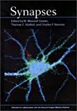 img - for Synapses book / textbook / text book