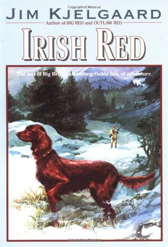 Irish Red (Irish Setter Guy)