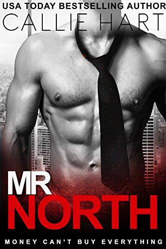 Mr. North cover