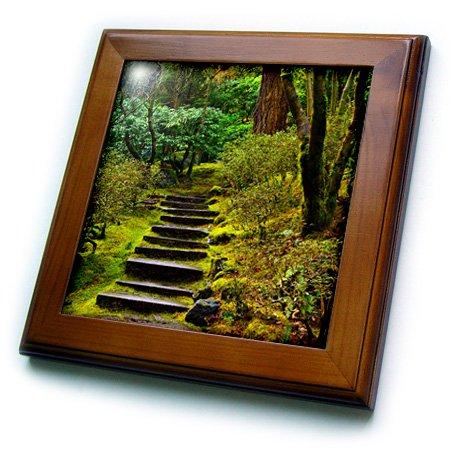 (3dRose Steps, Wild Japanese Garden, Portland, Oregon, USA-Framed Tile, 8 by 8-inch (ft_206949_1))