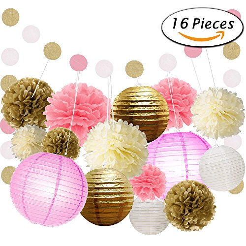 Paxcoo 16 Pcs Tissue Paper Pom Poms Flowers Paper Lanterns and Polka Dot Paper Garland for Wedding Party Decorations (Paper Flower Pom)