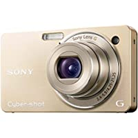 Sony Cyber-shot DSC-WX1 (International Model)