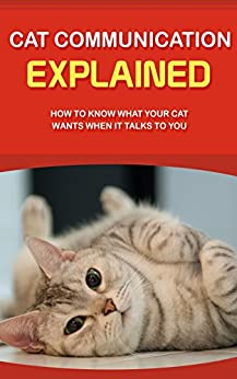how to know what your cat wants