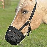 Cashel Horse Grazing Muzzle Halter - All Sizes