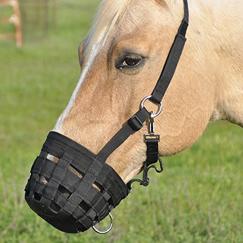 Cashel Grazing Muzzle Halter - Size: Horse