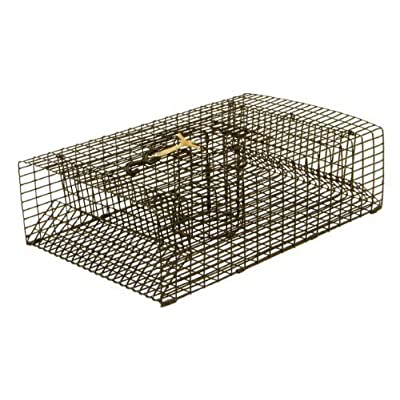 Protoco 11 x 18-Inch Crawfish Trap by Protoco Enterprises